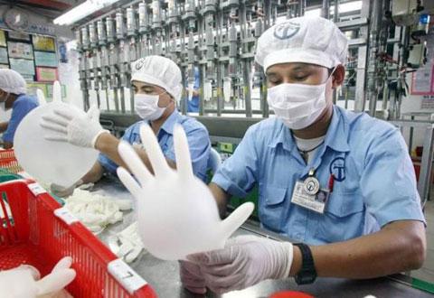 Nhà máy sản xuất găng tay cao su Shorubber  Perlis, Malaysia